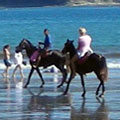 Horseback riding - the opportunity to experience nature at its most intimate level